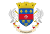 Saint Barthélemy Flag Icon
